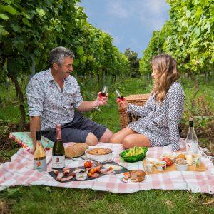 chet valley vinyard picnic